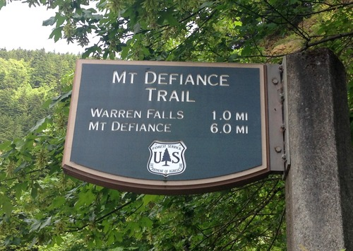 Medium mt defiance 1