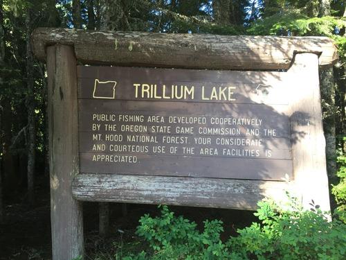 Medium trillium lake