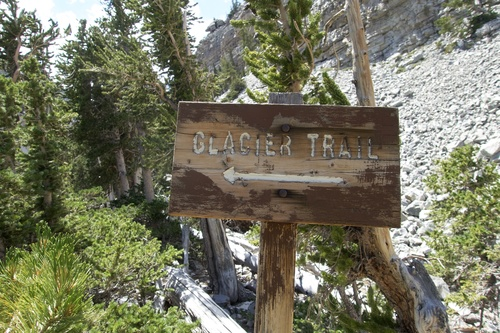 Medium glacier trail great basin national park