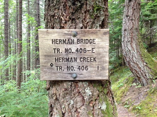 Medium herman creek 1